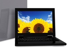 Digital Photo of Sunflowers on Laptop