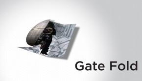 Gate Fold Brochure