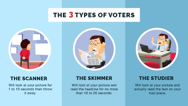 infographics three types of campaign voters