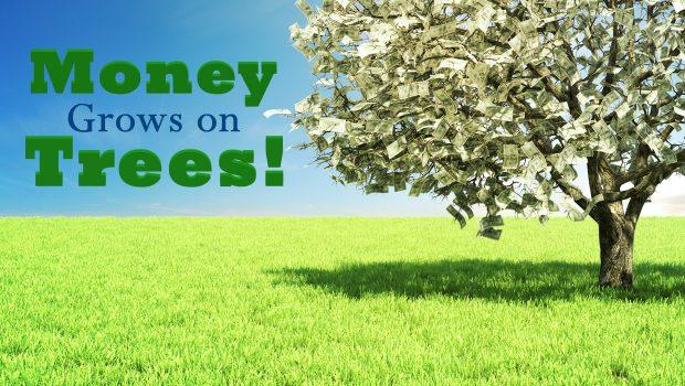 Custom Door Hangers Bring in Money Growing on Trees